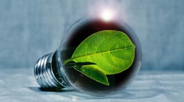Grønt Aftryk - grøn fremtid